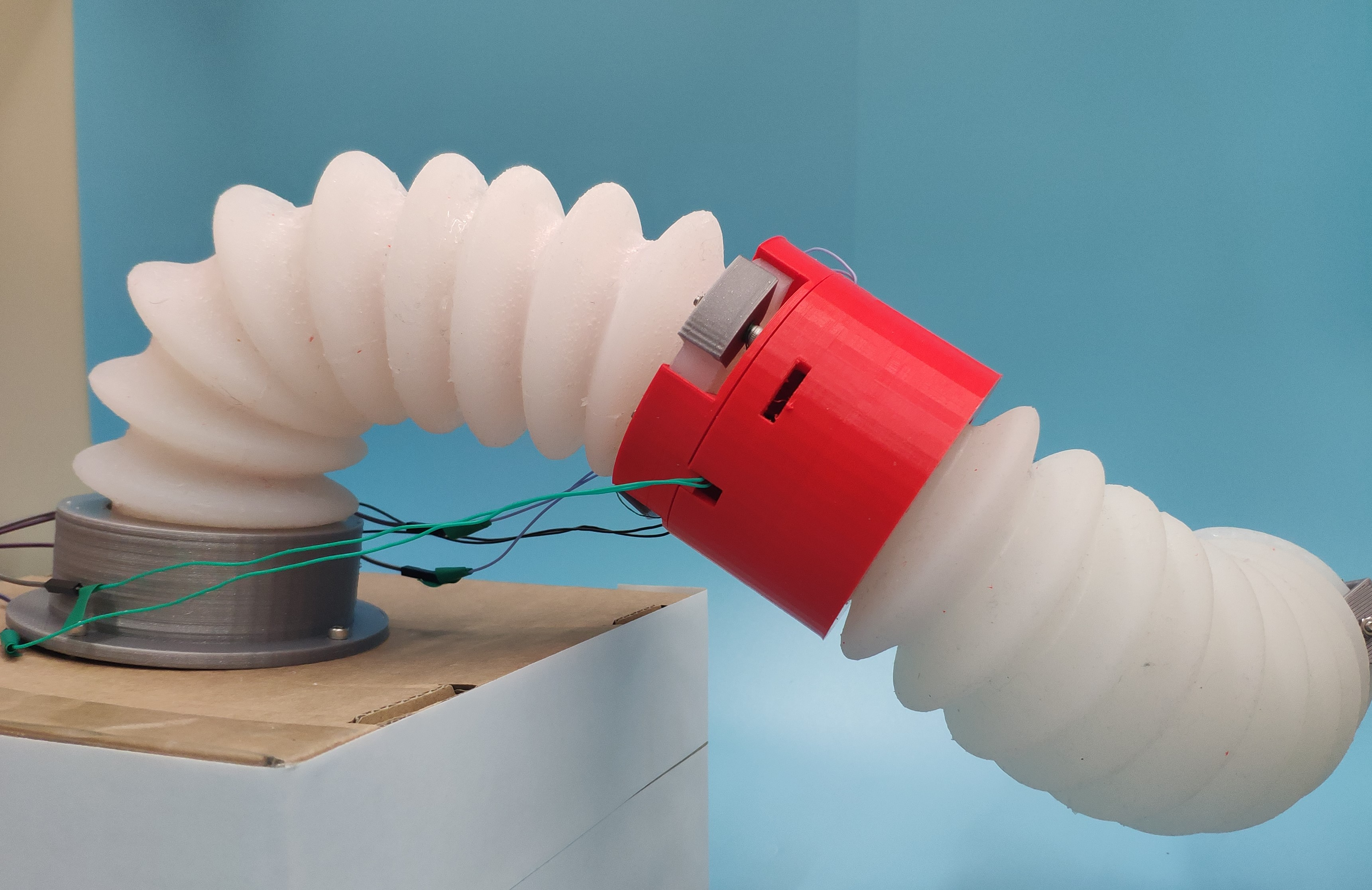 This photo shows an example of a robotic soft arm, built from two flexible white segments connected at a red elbow