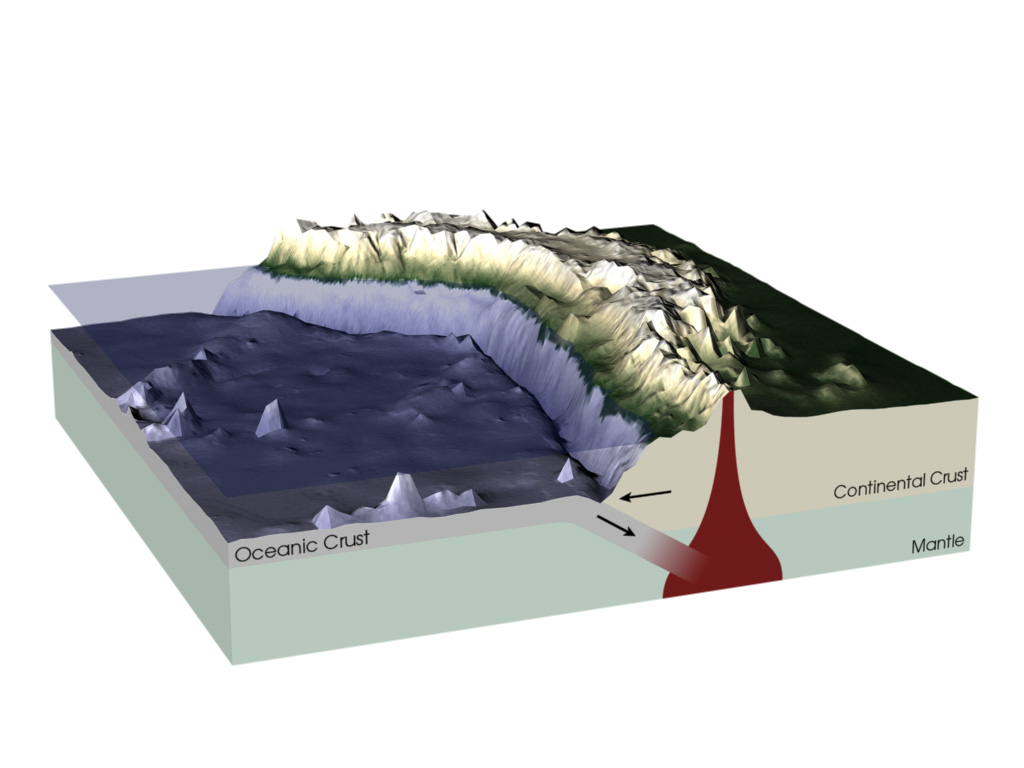 A 3-D illustration shows a thin slab of gray oceanic crust, which is covered by water, being pushed underneath thicker beige continental crust and into the Earth's mantle, shown in a light green color. Mountains and volcanoes have formed on the continental crust above the subduction zone.